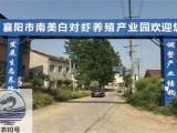 楚襄农养殖基地 从各方面为合作伙伴的创业之路保驾护航