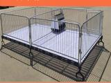 供应小猪保育床专为仔猪焊接设计