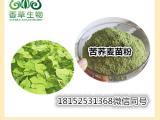 苦荞麦苗粉99%  荞麦苗提取物 荞麦苗汁粉 荞麦肽粉