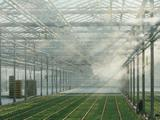 生态园林城市景观加湿器