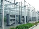玻璃温室建设厂家