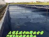 养殖皮皮虾帆布水池 鱼虾专用环保无毒帆布