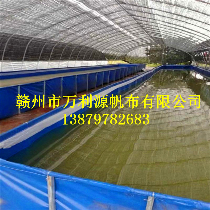 5c7b4862cac76_wps图片