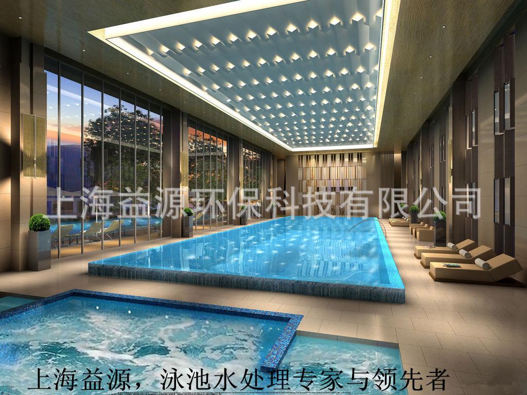 上海益源供应恒水源HSY游泳池设备