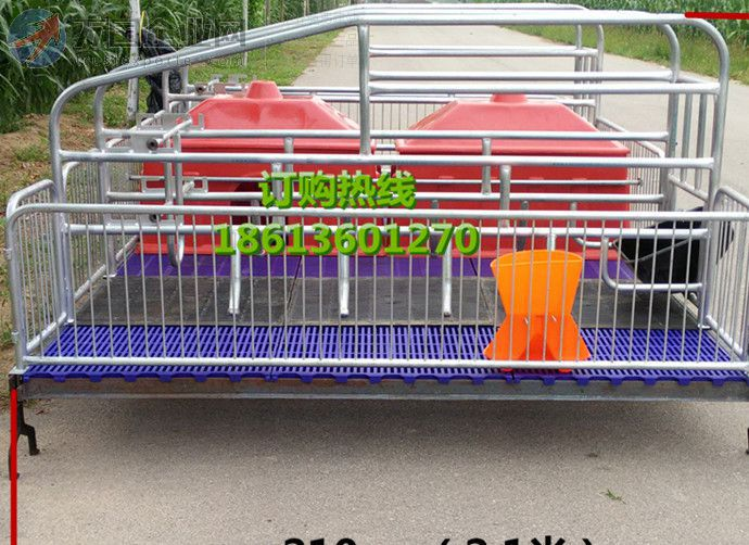 厂家直销猪养殖设备双体产床 繁殖器具 壮壮猪 母猪产床