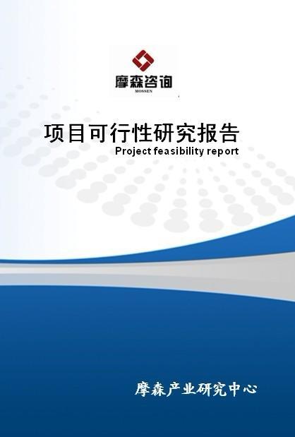 舞台工程配套设备项目立项报告(15923205300)