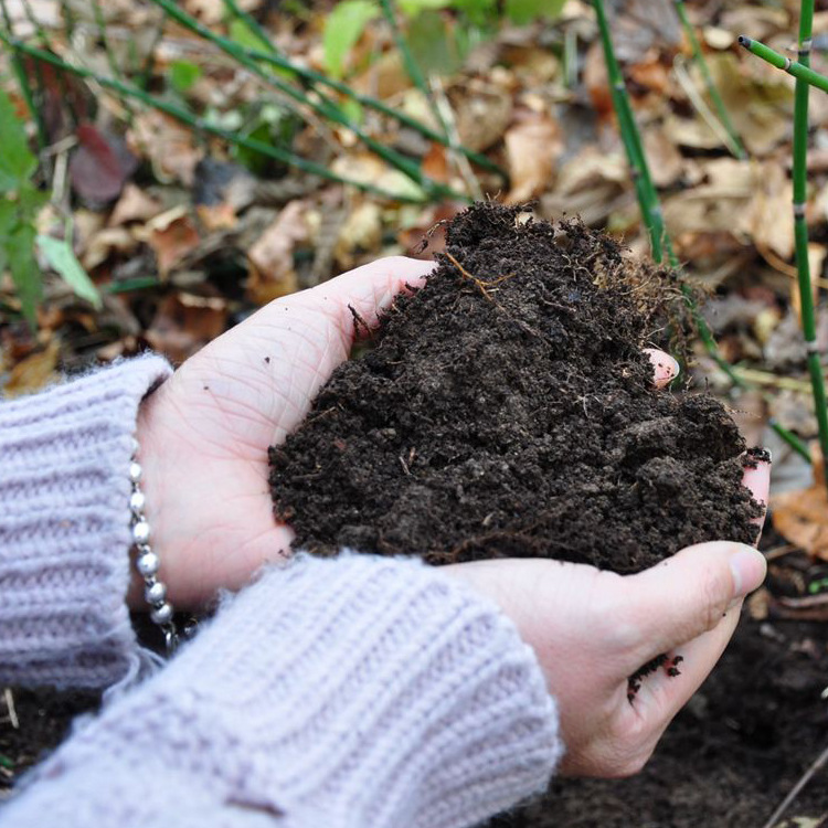 栽培基质养分泥炭 营养土 多肉种植育苗基质栽培基质