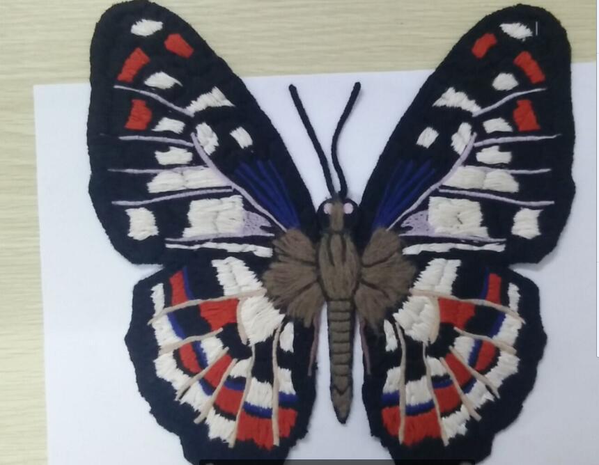 业余手工绣花毛线绣花提供非凡复杂多色蝴蝶图案加工