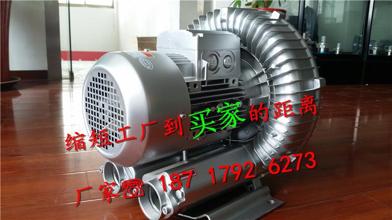 低压鼓风机的参数 TWYX 回转式鼓风机 回转式 高压风机