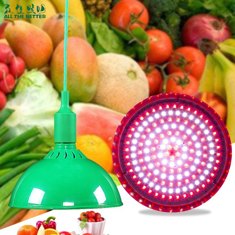 厂家直销20W30W50W防水透镜生鲜灯白色红色绿色猪肉灯PVC超市灯