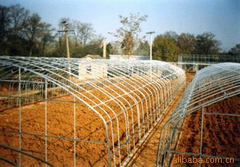 大量供给GP-625 热镀锌钢管