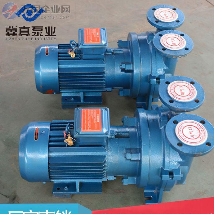 自动2BV5131水环式真空泵 气体传输泵