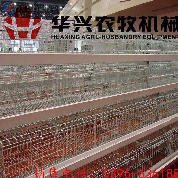 蛋鸡自动化养殖设备全自动鸡笼农机网 鹌鹑,鸡,鸭,鸽