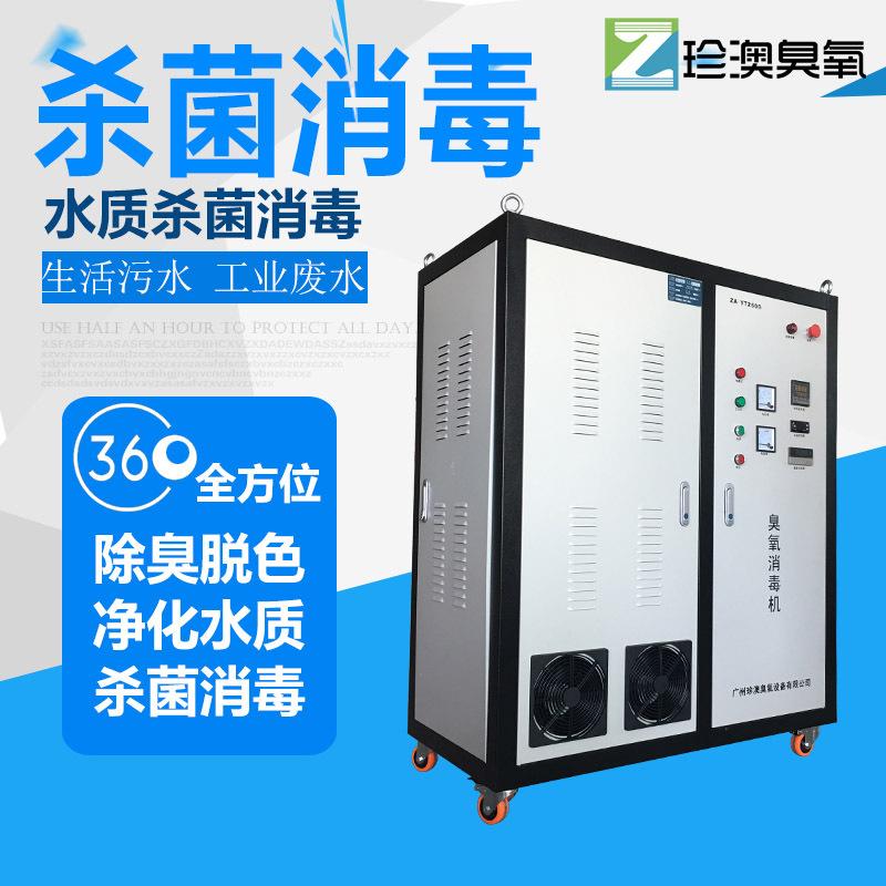 珍澳大型臭氧发生器生产用水净化水杀菌消毒设备500G高浓度臭氧机