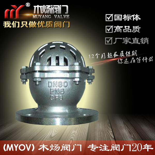 WCB碳钢水泵底阀 升降式法兰底阀