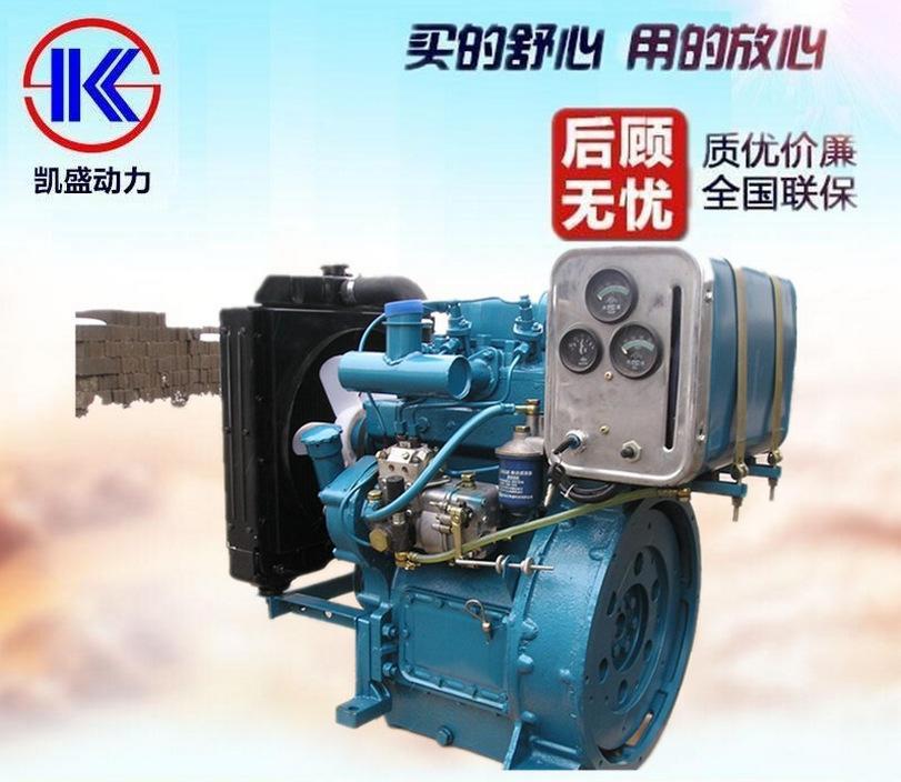 潍坊 19.5KW 发动机 内燃机 2110D 26.5马力 双缸 发电用 柴油机