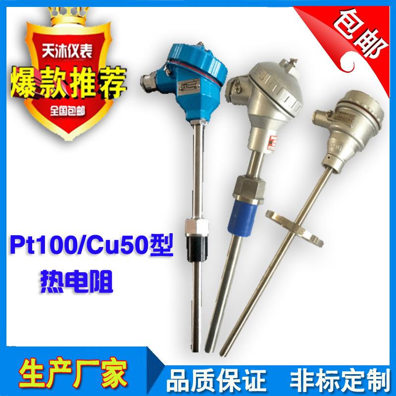 防腐热电阻 铠装热电阻